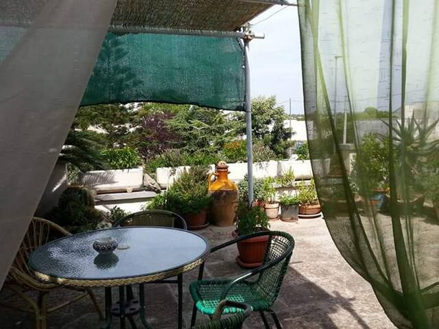 A casa di Donna Carmela - Novoli - Bed & Breakfast