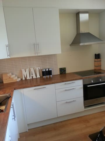 appartment with two bedrooms and private parking - Haugesund
