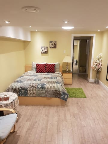 Beautiful 250sqft basement studio-en suite+kitchen - Toronto - House