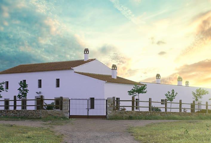 Cortijo La Panadera (Córdoba) - Pedroche