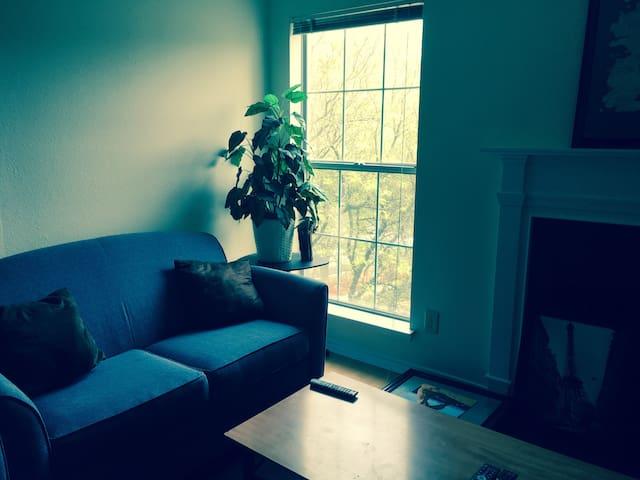 Upscale Area, Private Room, Walk to Metro, Near DC - McLean - Apartmen