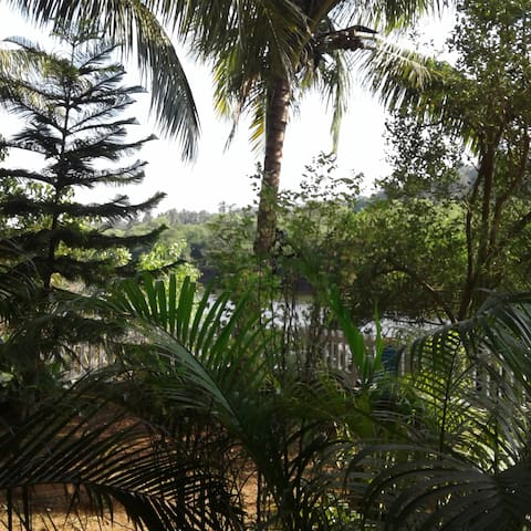 Studio apartment with riverview - 西奧利姆(Siolim)