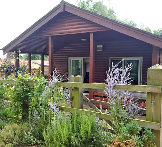 Peaceful Cabin Near the Lakes and lovely woodland - Pentney - 小木屋