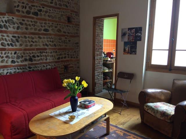 Gorgeous room, near train station and city center - Tuluza - Apartament