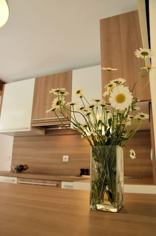 Apartment Kamnik - Kamnik - Daire