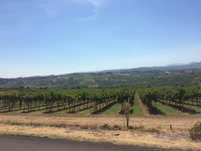 Nuova Accogliente casa di campagna - Montù Beccaria