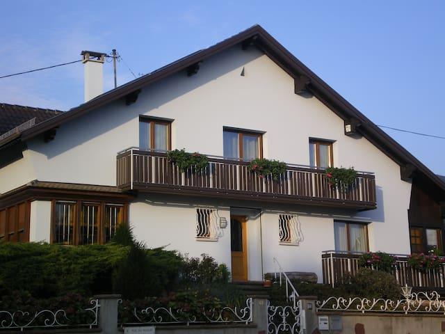 Gènemarie - Pfaffenheim - Apartment