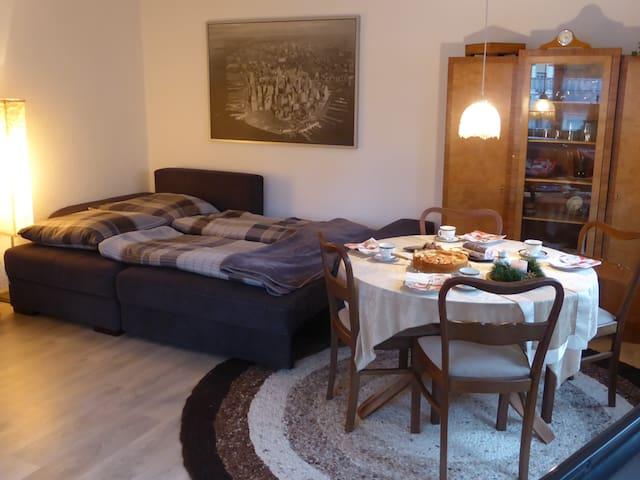 Gemütliche (komplette) Wohnung im Stadtzentrum!! - Neustadt (Hessen) - Appartement