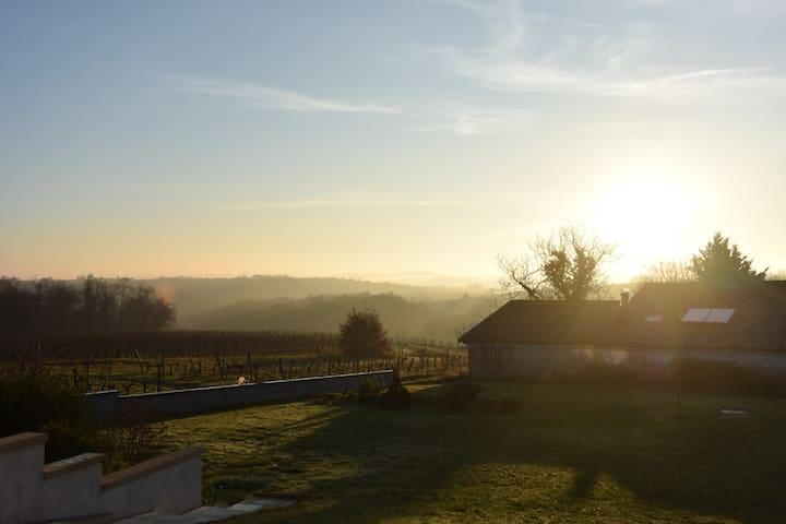 Joli appartement au calme des vignes du Bordelais - Sainte-Croix-du-Mont - Departamento