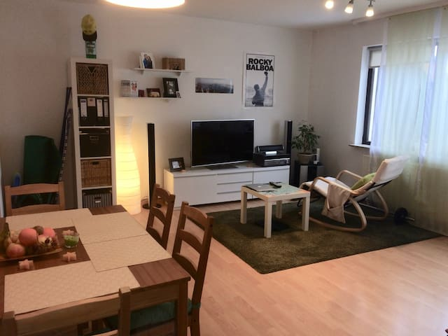 Cozy Apartment for 2 Person with an amazing view - Karlsruhe - Lägenhet