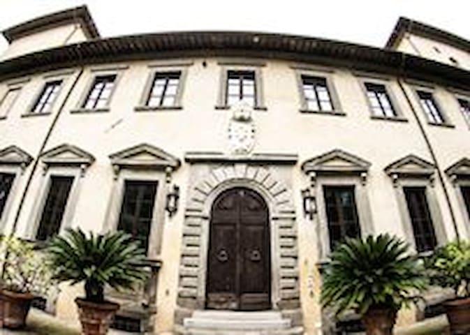 Bellissimo mezzanino inserito in  Villa storica - Metato - 公寓