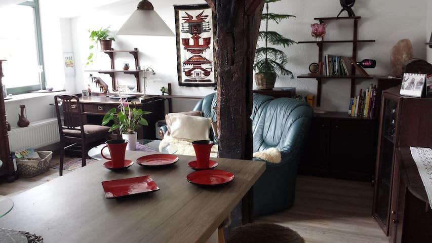 Gemütlich + GENIAL ZENTRAL - 什未林(Schwerin) - 公寓