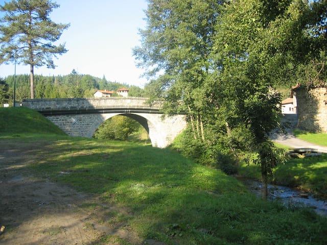 Dans la vallée du Doulon. - Saint-Vert - Haus