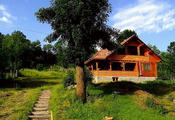 New house built in old Romanian style - Bertea - Villa