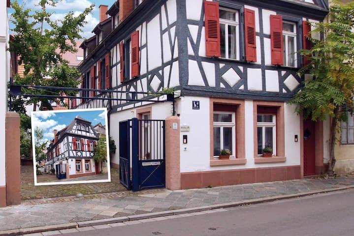 Modernes Apartment mit Historie - Speyer - Appartement