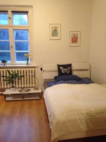 nice room in the city center // 230 € per month - Frankfurt (Oder) - Lejlighed