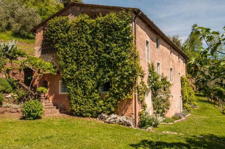 Damiano - Villa with private pool, beautiful views - Monsagrati - Villa