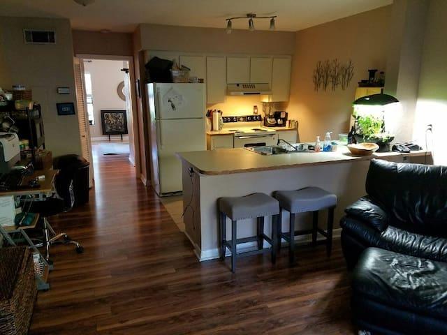 Luxury - Alachua County - Apartmen