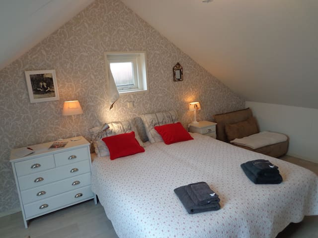 modern zolder appartement 35 M2 - Nieuwvliet - Loft