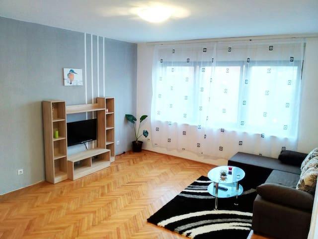 Apartment PREMIJA - Vrdnik - Appartement