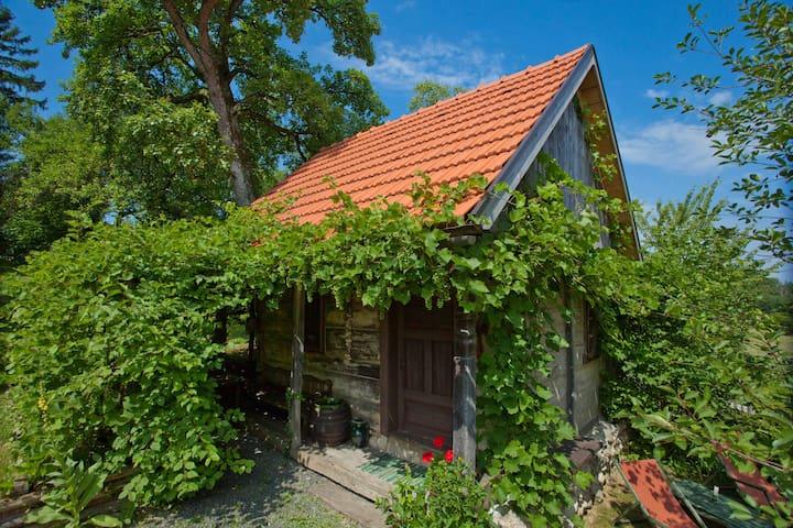 Cottage Juraj - traditional cottage - Donja Stubica