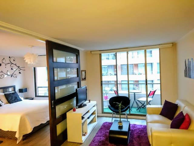 Lindo Depto cn excelente ubicación - Santiago - Appartement
