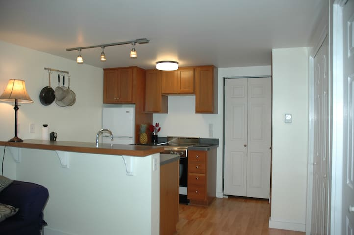 Affordable In-Town Apartment - Tisbury - Daire