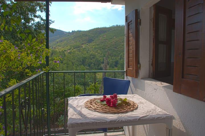 Retiro da Arminda - Turismo Rural - Quarto Duplo - Canedo - Bed & Breakfast