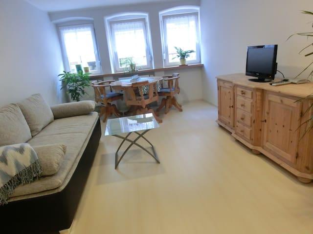 Schöne, helle Wohnung in Annweiler - Annweiler am Trifels - Huoneisto