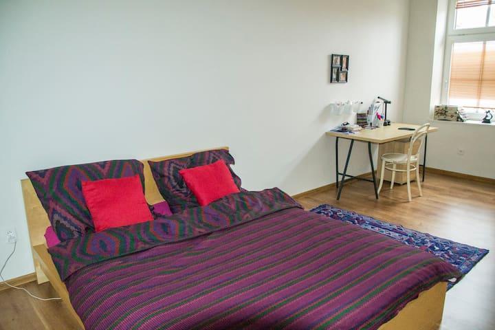 Apartment in centre of Olomouc - 奧洛穆克(Olomouc) - 公寓