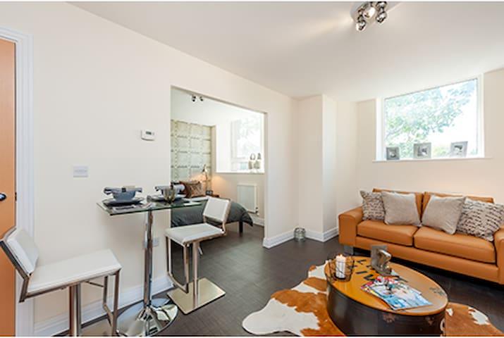 Skyline House Apartment - Stevenage - 公寓