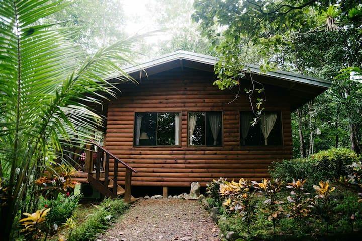 RainForest Ginger Villa W/River and Waterfalls - Quepos - Villa