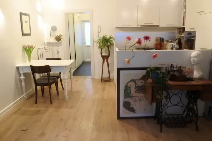 charming appartment near central station - 安特衛普(Antwerp)