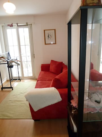 cozy room close to Zurich (in small town Dietikon) - Dietikon - Appartement