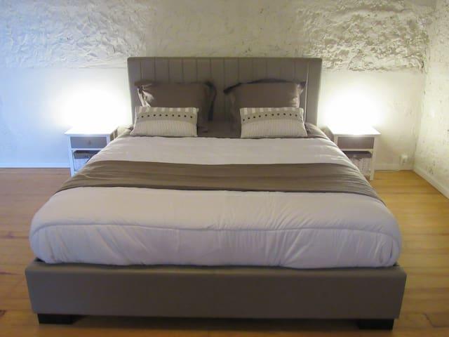 Nice bedroom 30sqm with 1 kingsize bed + 2 beds 90 - Cessieu - Casa