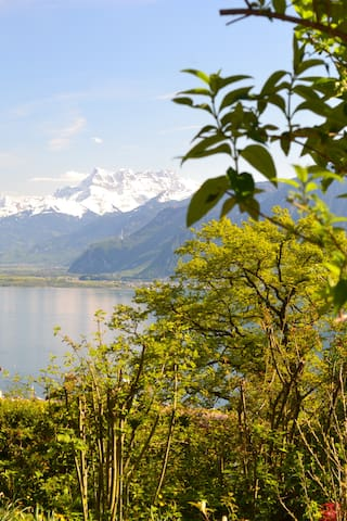 Cosy place with spectacular view - Chardonne - Hus