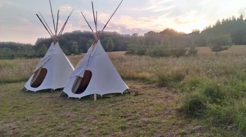 Be wild! Riesen-Tipi im Naturgarten - Zirkow - Tipi