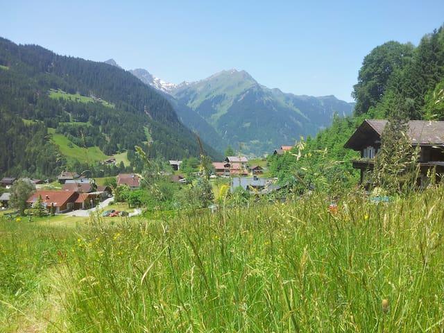 Natur pur - Erholung in den Bergen im Montafon - Gortipohl - Appartement