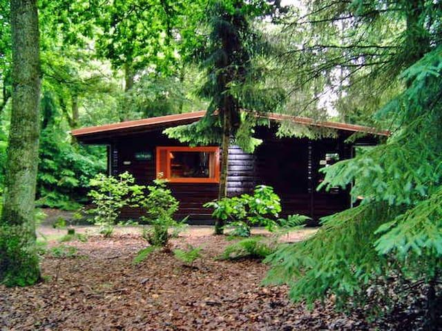Knus huis in het bos, met grote tuin - Meppen