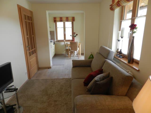 Hochwertig ausgestattetes Apartment mit Wohnküche - Marktgemeinde Übelbach - 家庭式旅館