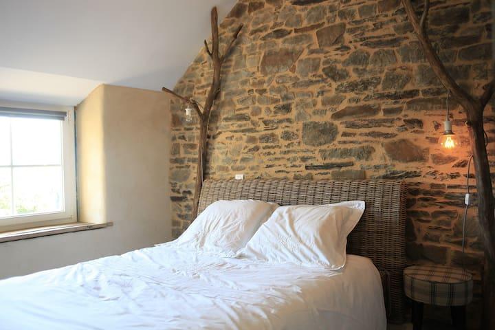 Gîte de la Grée, charme en Brocéliande - Néant-sur-Yvel - Natuur/eco-lodge