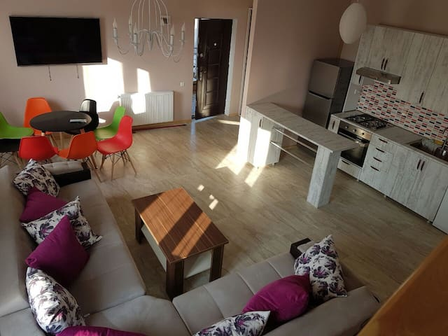 House Bazaleti Lake (2 Apartments each for 4-6 p.) - Mtskheta-Mtianeti - Pension