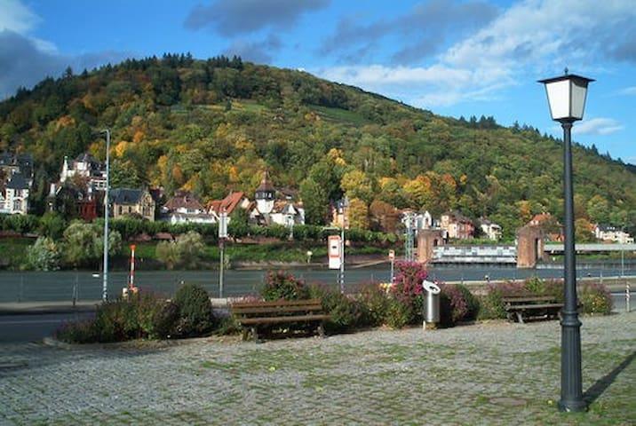 Nice Apartment direct in Old City - Heidelberg - Leilighet