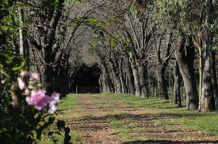 Great Farmhouse 50Km from Buenos Aires near Pilar - Zelaya - Chalet
