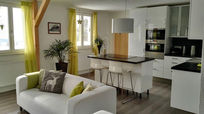 """Fewo """" Im Sängerhaus """" - Ühlingen-Birkendorf - Apartment"""