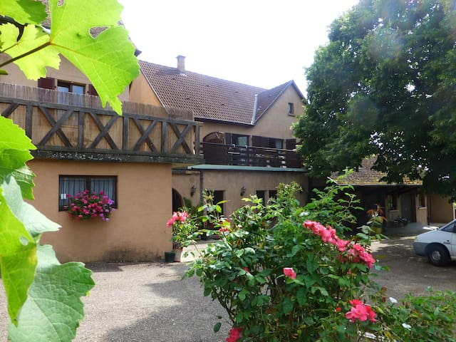 "LE"" RIESLING "",gîte rural à RIBEAUVILLE, ALSACE - Ribeauville - Departamento"