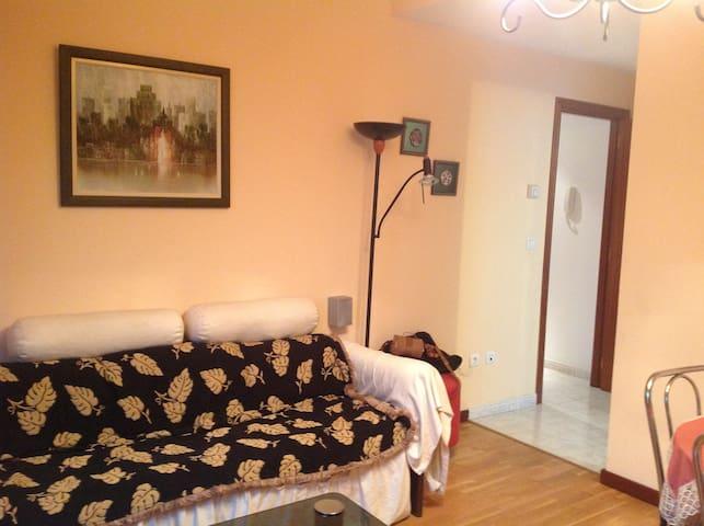 Acogedor apartamento. - Santiago de Compostela - Leilighet