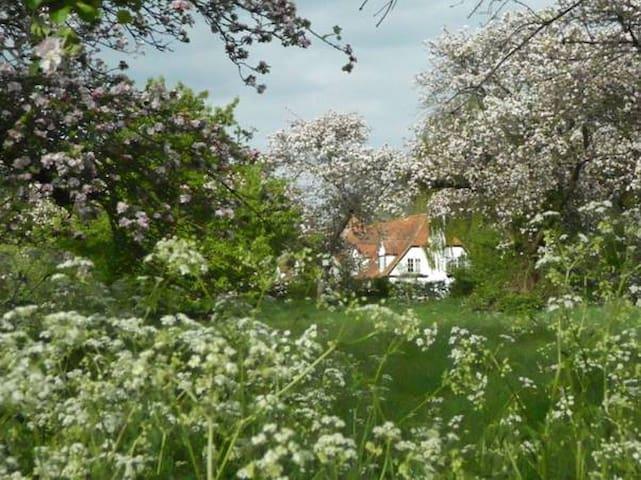 Double room with ensuite,  beautiful quiet village - Little Wittenham
