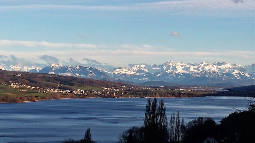 Beautiful Lake + Alpine views - Birrwil - Lägenhet