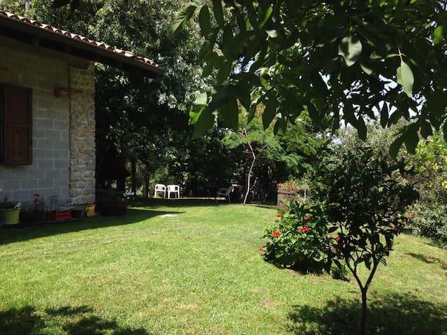 Chalet/ Holidays home - San Marco D'alunzio - Kulübe